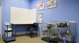 Мадагаскар, ветеринарная клиника