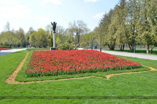В Харькове высадят около 2 миллионов цветов