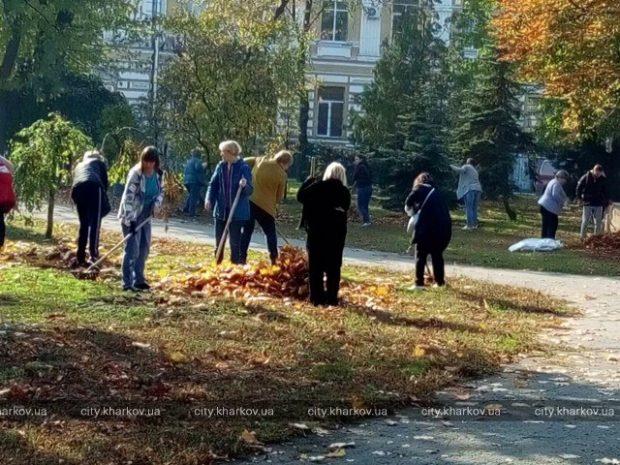 Скверы «Стрелка», Героев Небесной Сотни и Гимназическую набережную очистили от листвы