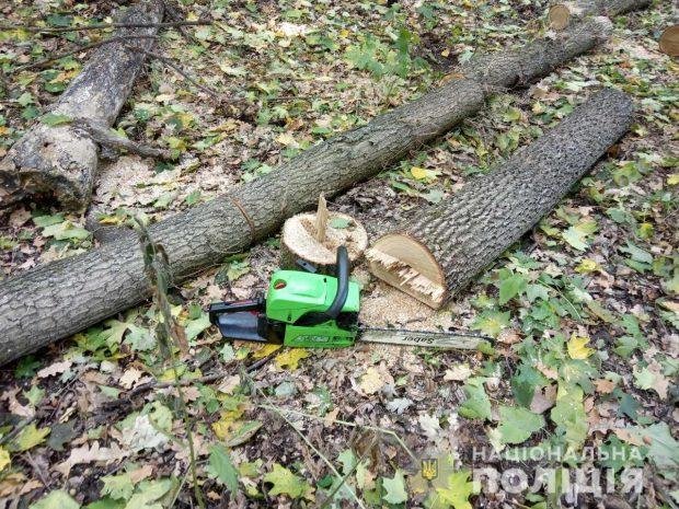 Под Харьковом полицейские разоблачили мужчину в незаконной порубке деревьев