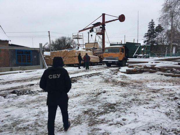 В Харьковской области руководителя госпредприятия вместе с подчиненными подозревают в хищении леса